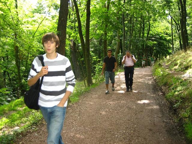 Spaziergang im Göttinger Wald