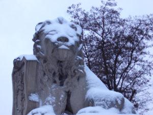 verschneiter Löwe