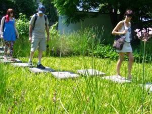 auf Steinen über den Teich